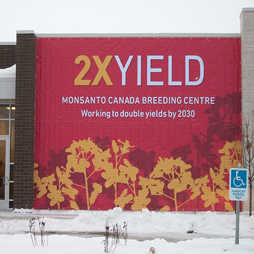 Winnipeg Signage - Monsanto